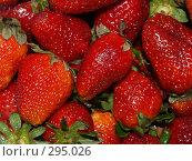 Купить «Клубника», фото № 295026, снято 1 мая 2008 г. (c) Примак Полина / Фотобанк Лори