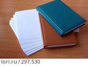 Ежедневники и бумаги. Стоковое фото, фотограф Светлана Симонова / Фотобанк Лори