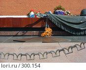"""Купить «Могила """"Неизвестного солдата"""".  Вечный огонь.», эксклюзивное фото № 300154, снято 27 апреля 2008 г. (c) lana1501 / Фотобанк Лори"""