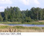 Купить «Ветер на воде», фото № 301394, снято 25 августа 2007 г. (c) Дмитрий Шимко / Фотобанк Лори