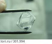 Купить «Алмаз перед обработкой», фото № 301994, снято 25 октября 2006 г. (c) Дмитриев Сергей / Фотобанк Лори