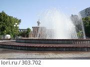 Купить «Гордской фонтан», фото № 303702, снято 30 мая 2008 г. (c) Цветков Виталий / Фотобанк Лори
