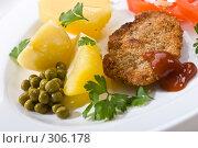 Купить «Мясное блюдо», фото № 306178, снято 18 сентября 2005 г. (c) Кравецкий Геннадий / Фотобанк Лори