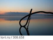 Над рекой туман. Стоковое фото, фотограф Баскаков Андрей / Фотобанк Лори