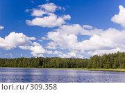 Купить «Озеро на лугу. Белые облака.», фото № 309358, снято 21 июля 2007 г. (c) Катыкин Сергей / Фотобанк Лори