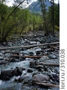 Купить «Горный ручей в лесу», фото № 310038, снято 14 ноября 2018 г. (c) Андрей Пашкевич / Фотобанк Лори