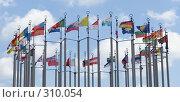 Купить «Флаги разных стран», фото № 310054, снято 3 июня 2008 г. (c) Цветков Виталий / Фотобанк Лори