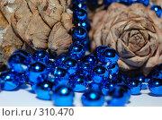 Купить «К Новому году», фото № 310470, снято 11 апреля 2008 г. (c) Анастасия Gorkaia / Фотобанк Лори