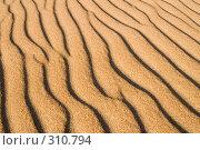 Купить «Песчаные волны», фото № 310794, снято 21 сентября 2018 г. (c) Малышева Мария / Фотобанк Лори