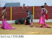 Купить «Коррида», фото № 310846, снято 13 августа 2006 г. (c) Знаменский Олег / Фотобанк Лори