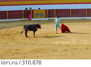 Купить «Коррида», фото № 310878, снято 13 августа 2006 г. (c) Знаменский Олег / Фотобанк Лори