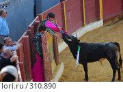 Купить «Коррида», эксклюзивное фото № 310890, снято 13 августа 2006 г. (c) Знаменский Олег / Фотобанк Лори