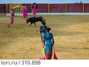 Купить «Коррида», фото № 310898, снято 13 августа 2006 г. (c) Знаменский Олег / Фотобанк Лори