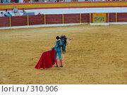 Купить «Коррида», фото № 310906, снято 13 августа 2006 г. (c) Знаменский Олег / Фотобанк Лори
