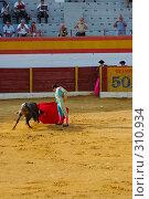 Купить «Коррида», фото № 310934, снято 13 августа 2006 г. (c) Знаменский Олег / Фотобанк Лори