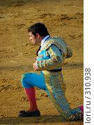 Купить «Коррида», эксклюзивное фото № 310938, снято 13 августа 2006 г. (c) Знаменский Олег / Фотобанк Лори
