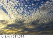 Купить «Бесконечное пространство», фото № 311314, снято 19 февраля 2020 г. (c) М / Фотобанк Лори