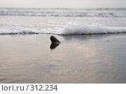 Купить «Прибой», фото № 312234, снято 14 июля 2007 г. (c) Константин Куприянов / Фотобанк Лори