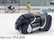Натюрморт на тему о хоккее. Стоковое фото, фотограф Дмитрий Неумоин / Фотобанк Лори