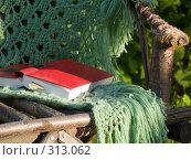 Купить «Книга на садовом кресле», эксклюзивное фото № 313062, снято 5 июня 2008 г. (c) Алина Голышева / Фотобанк Лори