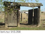 Купить «Ворота», фото № 313358, снято 19 мая 2008 г. (c) Талдыкин Юрий / Фотобанк Лори