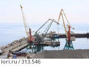 Купить «Ялта. Грузовой порт.», эксклюзивное фото № 313546, снято 2 мая 2008 г. (c) Дмитрий Неумоин / Фотобанк Лори
