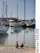 Купить «Когда же причалит наш корабль?», фото № 314378, снято 1 мая 2008 г. (c) Галина Лукьяненко / Фотобанк Лори