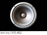 Купить «Акустический динамик, изолированный на черном фоне», фото № 315402, снято 29 мая 2008 г. (c) Руслан Керимов / Фотобанк Лори