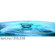 Купить «Корона от упавшей капли», фото № 315510, снято 5 апреля 2008 г. (c) Константин Тавров / Фотобанк Лори