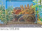 Купить «Бетонный забор, расписанный под подводный пейзаж», фото № 315810, снято 7 июня 2008 г. (c) Эдуард Межерицкий / Фотобанк Лори