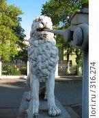 Купить «Санкт-Петербург. Львиный мостик. Лев», фото № 316274, снято 30 мая 2008 г. (c) Морковкин Терентий / Фотобанк Лори