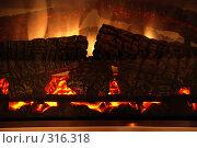 Купить «Огонь в камине», фото № 316318, снято 9 марта 2007 г. (c) Наталья Санченко / Фотобанк Лори