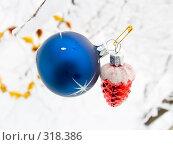 Купить «Новогодние елочные украшения на фоне заснеженного леса», фото № 318386, снято 11 ноября 2006 г. (c) Анатолий Заводсков / Фотобанк Лори