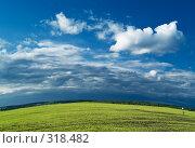 Купить «Сферическое поле», фото № 318482, снято 8 июня 2007 г. (c) Максим Пименов / Фотобанк Лори