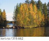 Купить «Карелия. Золотая осень на Насоновском озере. Последние лучи солнца», эксклюзивное фото № 319662, снято 25 сентября 2006 г. (c) Тамара Заводскова / Фотобанк Лори
