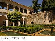 Купить «Испания: Гранада, Альгамбра и Хенералифе», фото № 320030, снято 1 мая 2008 г. (c) Андрей Каплановский / Фотобанк Лори