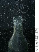 Купить «Белая бутылка», фото № 321974, снято 25 сентября 2007 г. (c) Евгений Казекин / Фотобанк Лори