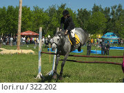 Купить «Конкур», фото № 322202, снято 12 июня 2008 г. (c) Талдыкин Юрий / Фотобанк Лори