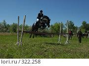 Купить «Конкур», фото № 322258, снято 12 июня 2008 г. (c) Талдыкин Юрий / Фотобанк Лори