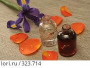 Купить «Две бутылки с маслом и оранжевая роза», фото № 323714, снято 28 января 2008 г. (c) Останина Екатерина / Фотобанк Лори