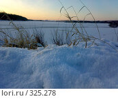 Пришла зима. Стоковое фото, фотограф Дружинин Александр / Фотобанк Лори