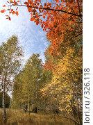 Купить «Яркий осенний пейзаж», фото № 326118, снято 19 сентября 2018 г. (c) Дмитрий Яковлев / Фотобанк Лори