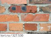 Купить «Старая кирпичная стена. Крупный план», фото № 327530, снято 10 июля 2006 г. (c) Алексей Попрыгин / Фотобанк Лори