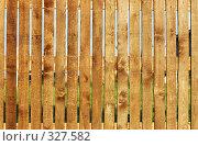 Купить «Деревянный забор», фото № 327582, снято 18 июня 2008 г. (c) Александр Катайцев / Фотобанк Лори