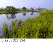 Купить «Летний вечер на берегу озера», фото № 327854, снято 9 июня 2008 г. (c) Олег Рубик / Фотобанк Лори