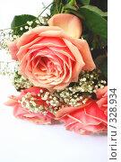Букет розовых роз на белом фоне. Стоковое фото, фотограф Марина Субочева / Фотобанк Лори