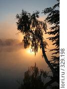 Купить «Дерево в лучах восходящего солнца на озере в Подмосковье», фото № 329198, снято 30 июля 2005 г. (c) Татьяна Колесникова / Фотобанк Лори