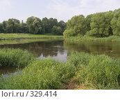 Купить «Боровск на реке Протве. Живописные берега со старыми ветлами», эксклюзивное фото № 329414, снято 15 июня 2008 г. (c) Тамара Заводскова / Фотобанк Лори