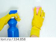 Купить «Санитарная уборка», фото № 334858, снято 26 октября 2007 г. (c) podfoto / Фотобанк Лори
