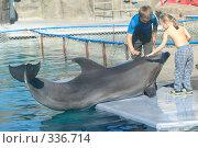 Купить «Дельфин и дети», эксклюзивное фото № 336714, снято 28 августа 2005 г. (c) Дмитрий Неумоин / Фотобанк Лори